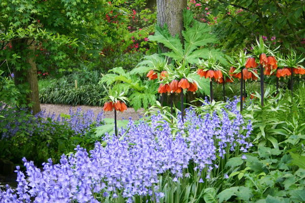 Keukenhof Gardenvisit.com