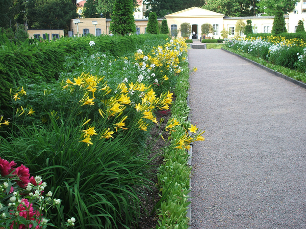 Linnetradgarden (Linnaeus Garden) Henry Heatly