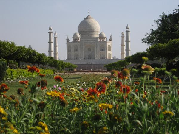 Taj Mahal Garden Ben Dalton