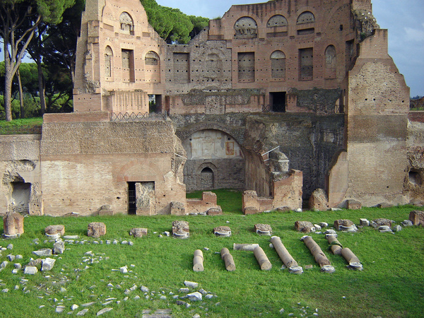 Emperors' Palace (Flavian Palace, Palatine Hill) Fraser Deziel