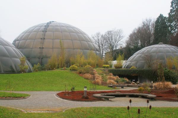 Zurich University Botanical Gardens Tim Parker