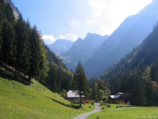 La Thomasia Alpine Garden Laura B