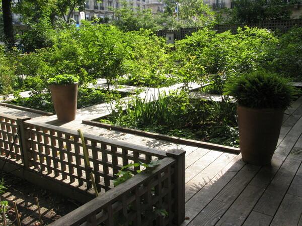 Paris Medieval Museum Garden Gardenvisit.com