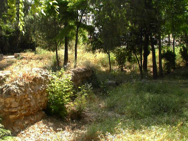 Plato's Academy Grove Gardenvisit.com