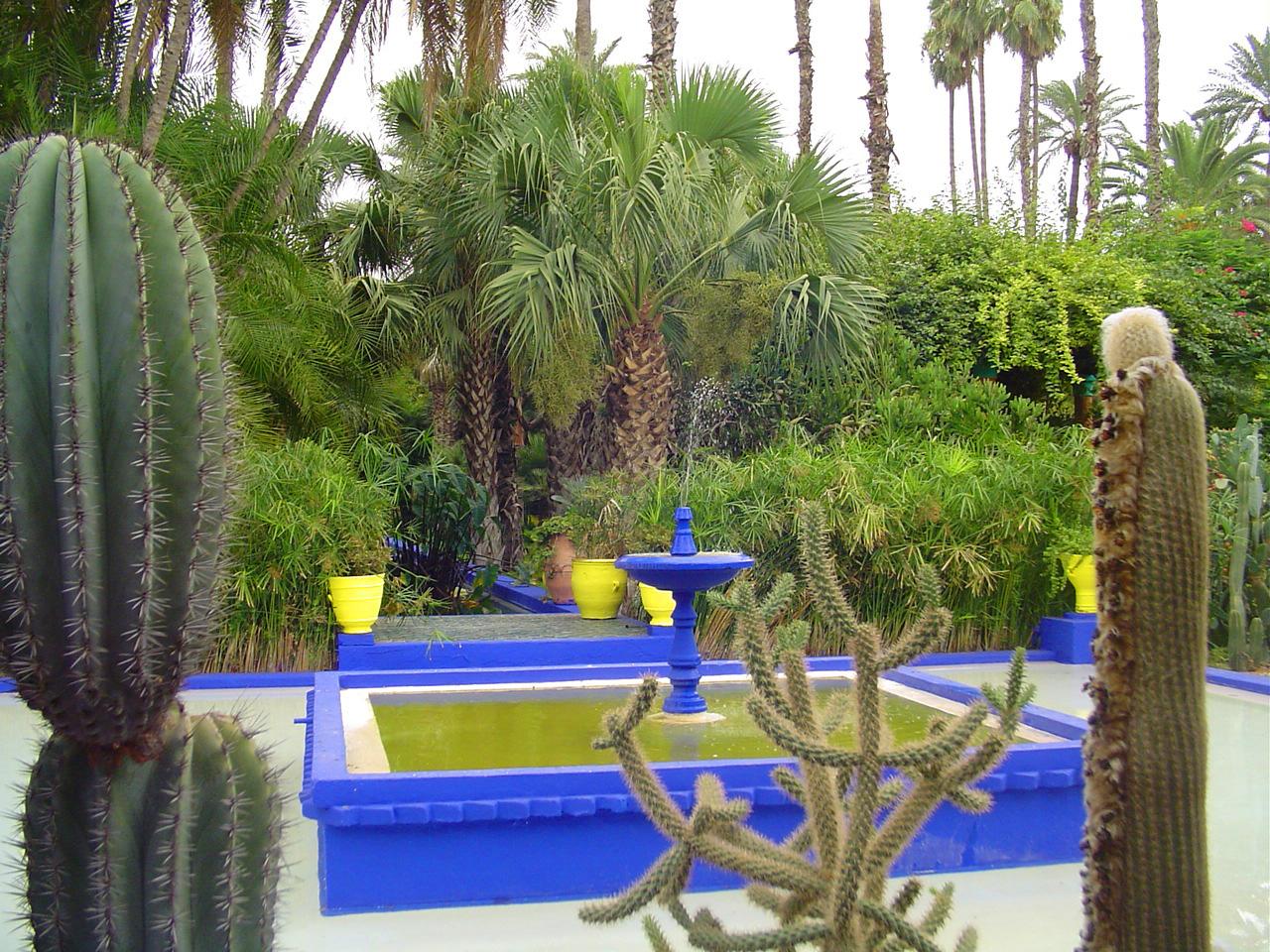 majorelle garden didier cornice - Majorelle Garden
