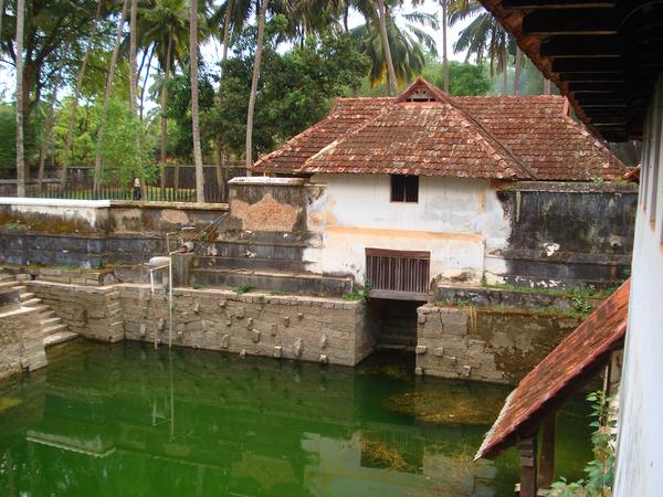 Padmanabhapuram Palace Garden Arthur Dave