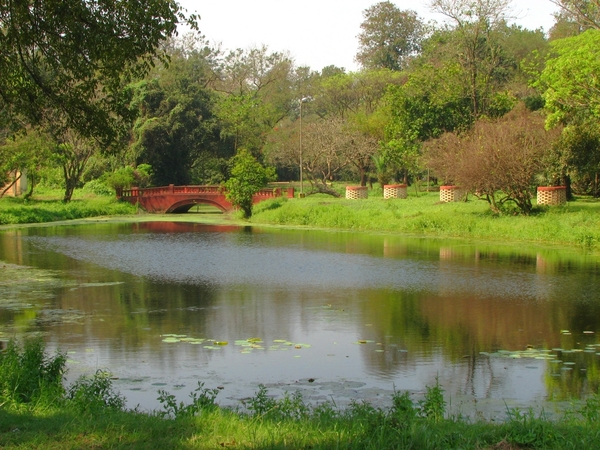 Calcutta Botanic Garden Keshav