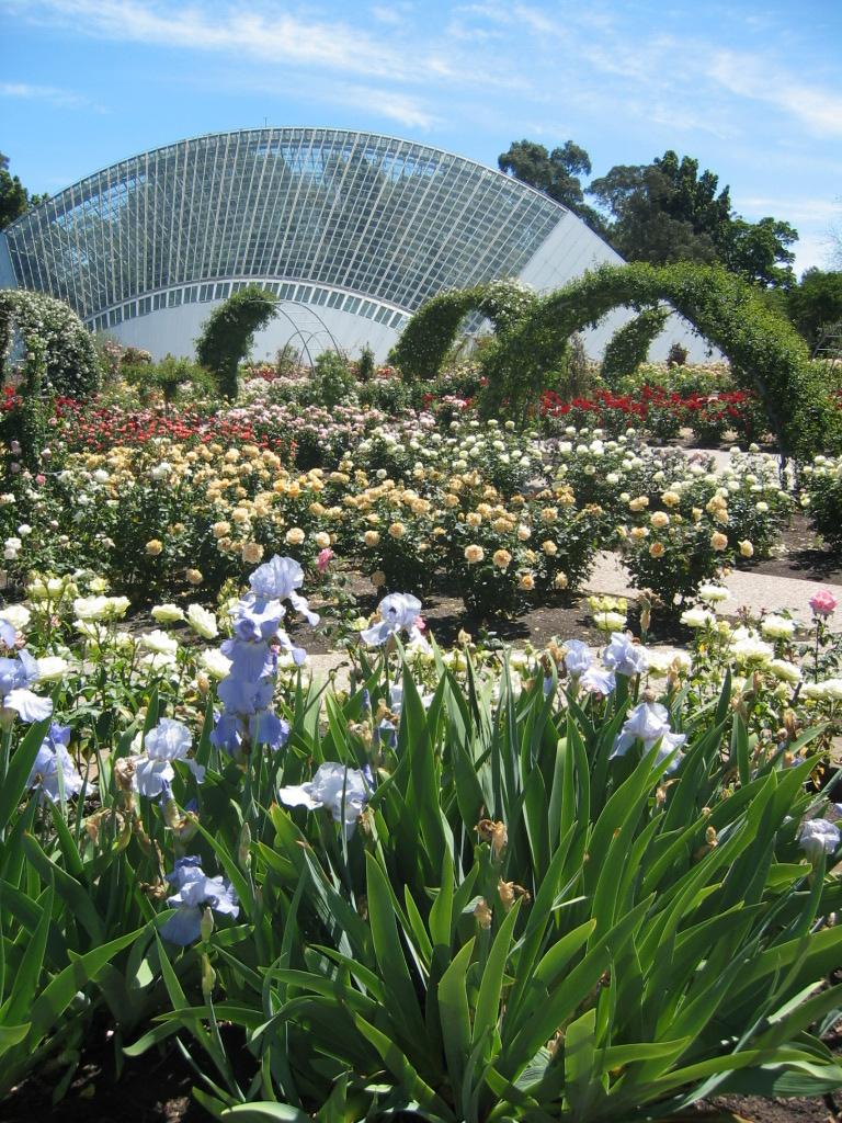 Adelaide botanic garden for Landscape gardeners adelaide