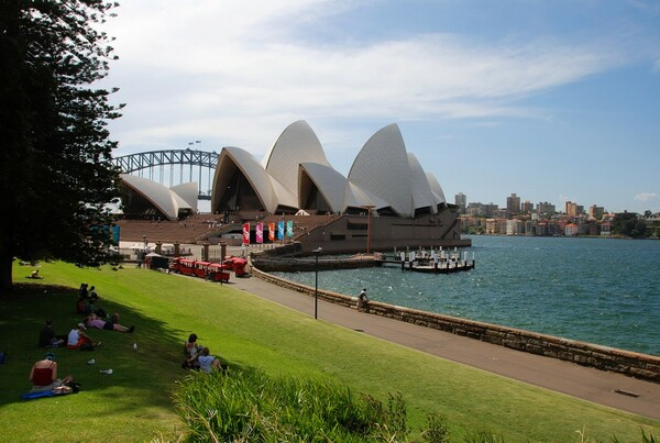 Royal Botanic Gardens Sydney calium