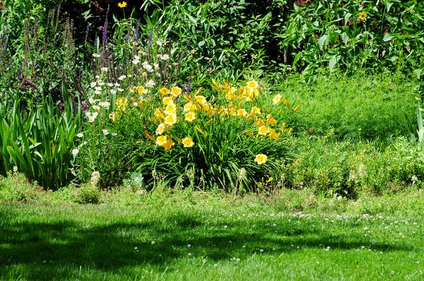Lyman Estate - The Vale Garden Ed Yourdon