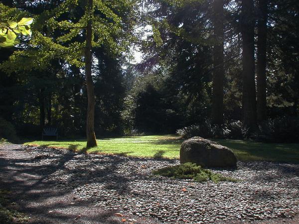 Chase Garden Daphne Stannard
