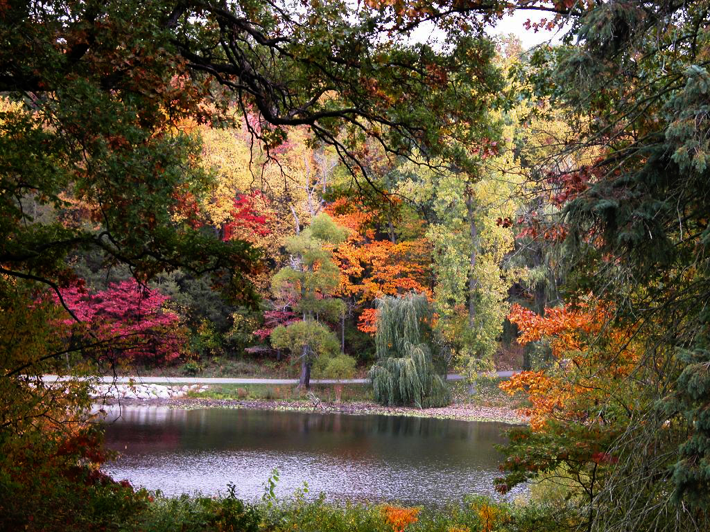 Hidden Lake Gardens Julie Falk