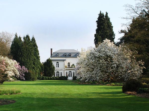 Arboretum Kalmthout Mich De Mey