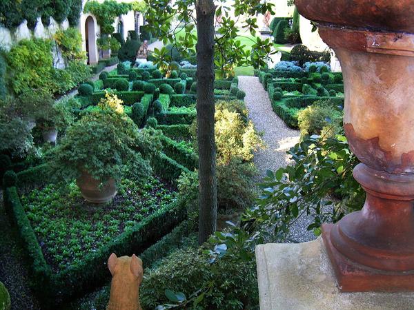 Villa Capponi Garden Clover Bee