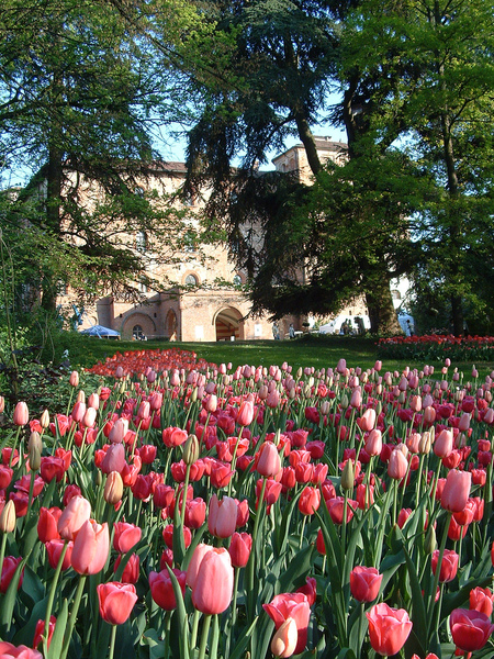 Pralormo Castle Garden Lorenzo S