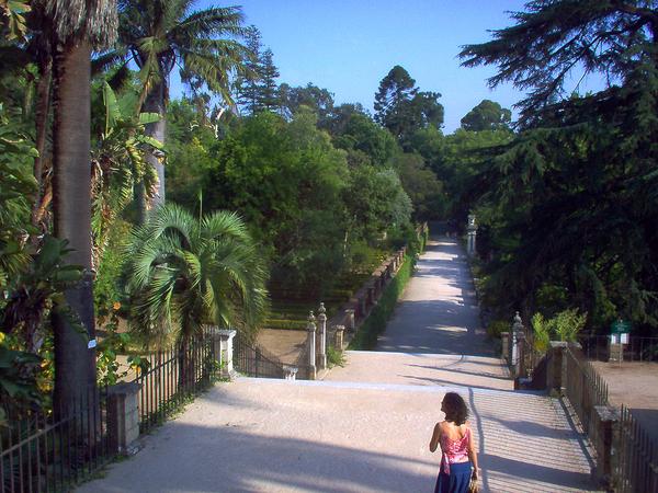 Jardim Botanico de Coimbra Ana