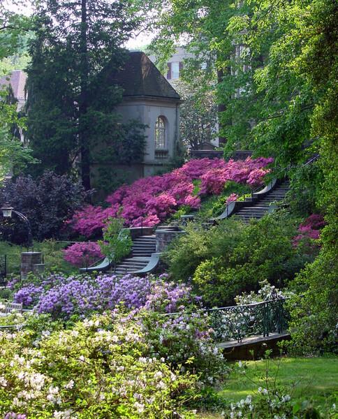 Steps, Winterthur Garden