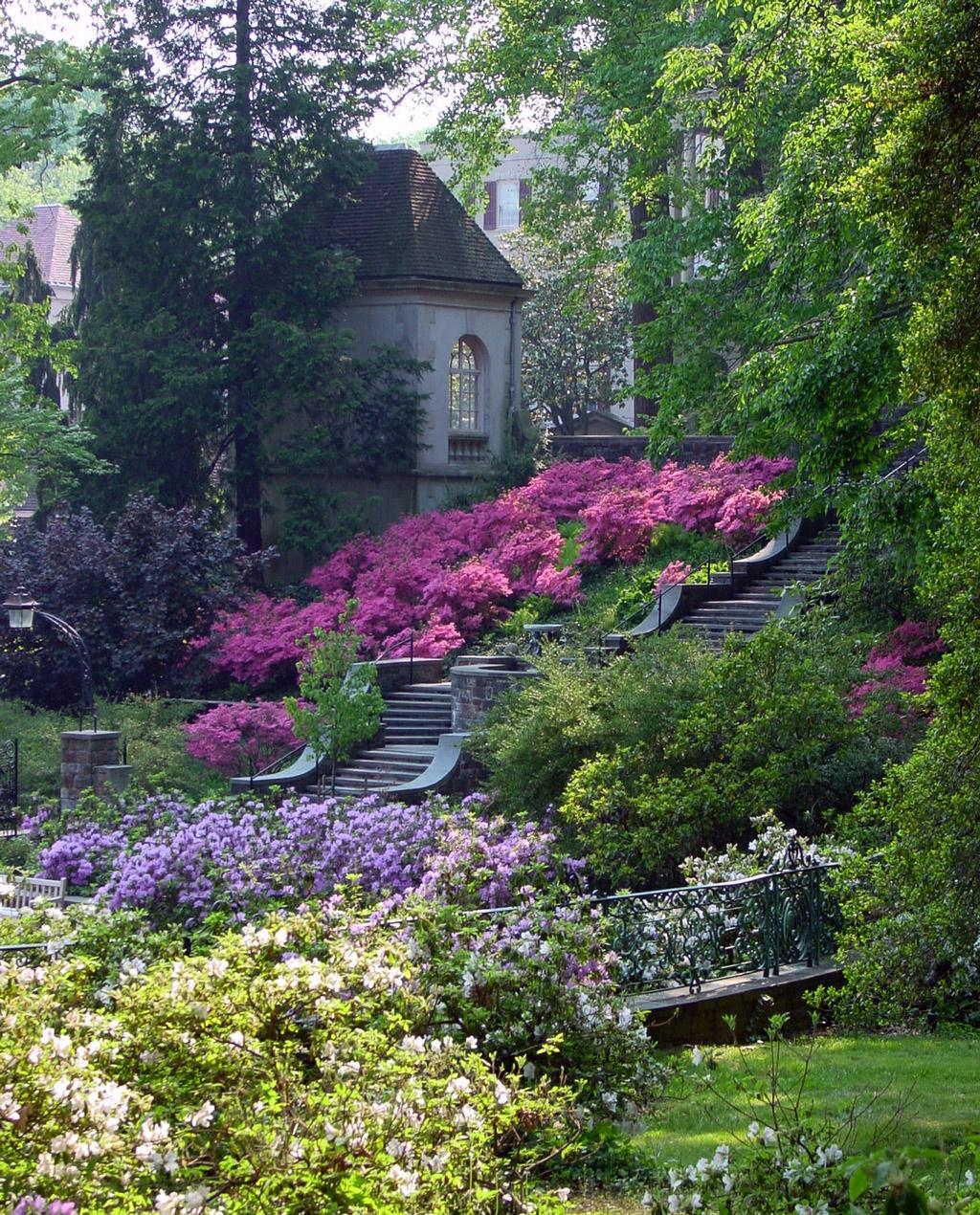http://www.gardenvisit.com/uploads/image/image/171/17137/winterthur_garden_steps_original.jpg