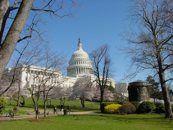 United States Capitol, Washington DC