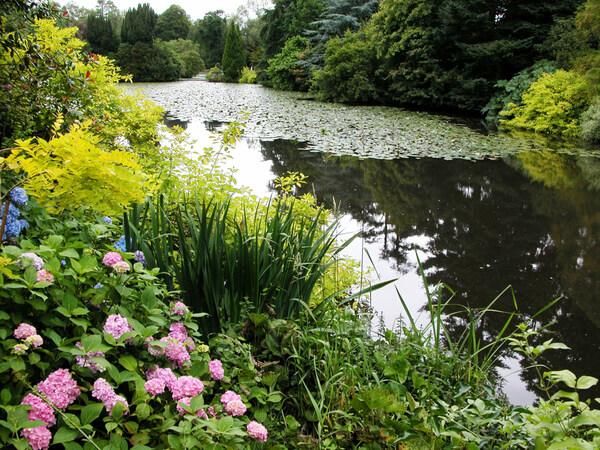 Lake, Altamont Gardens