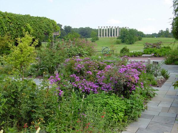 Columns, US National Arboretum Garden