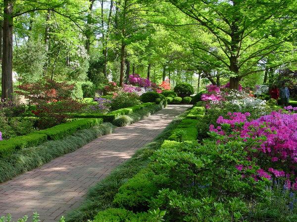 US National Arboretum Garden