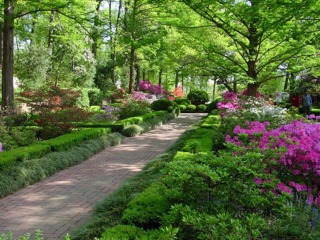 Image result for us national arboretum