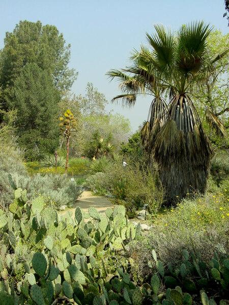 Rancho Santa Ana Garden, California