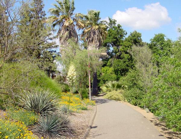 Davis Arboretum, CA