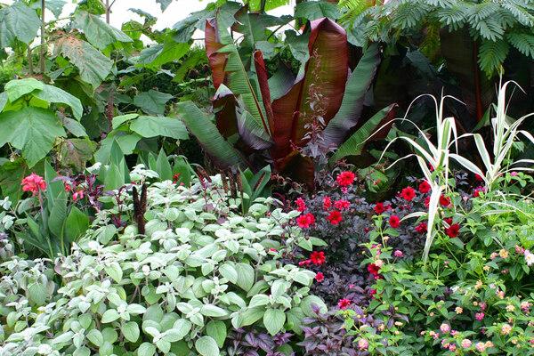 Broadview Gardens, Kent
