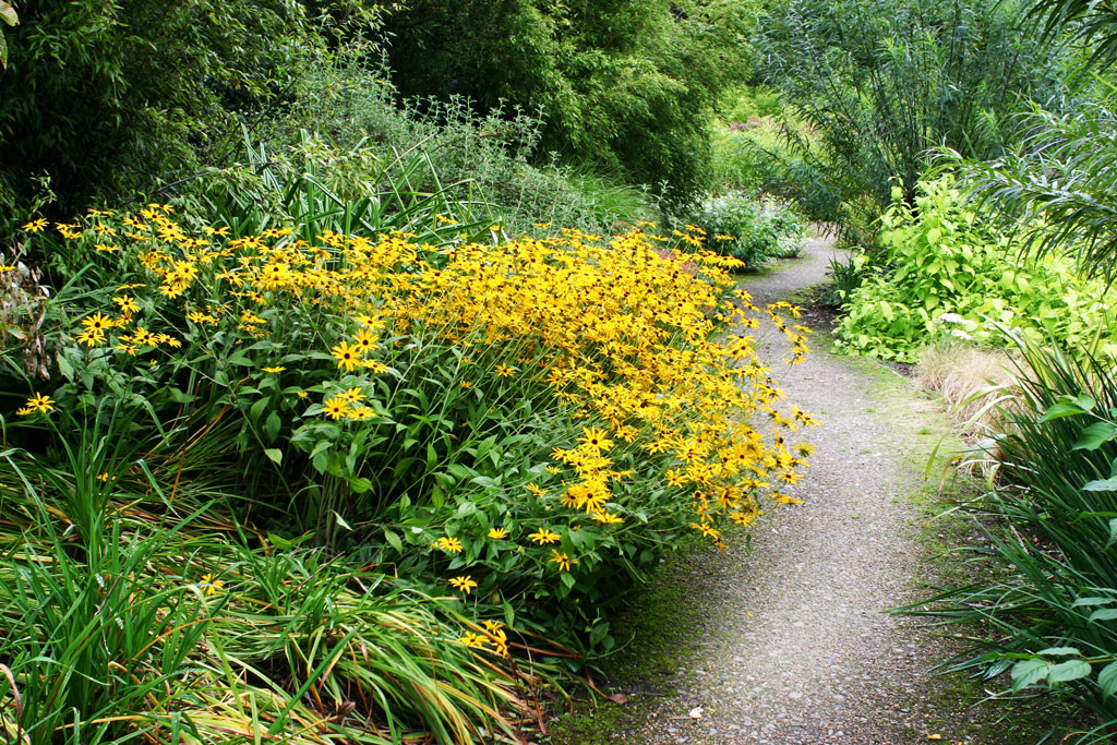 Attractive Path, Broadview Gardens