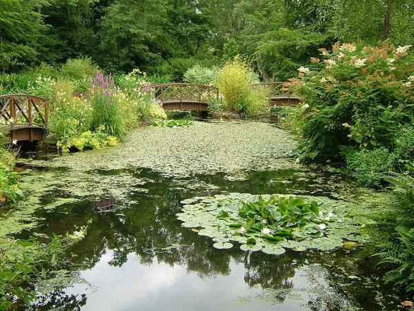 Water Garden, Monteviot House Garden