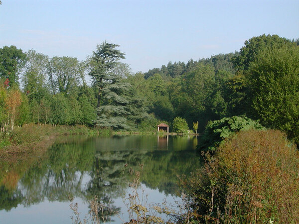 Coverwood Lakes & Gardens, Surrey