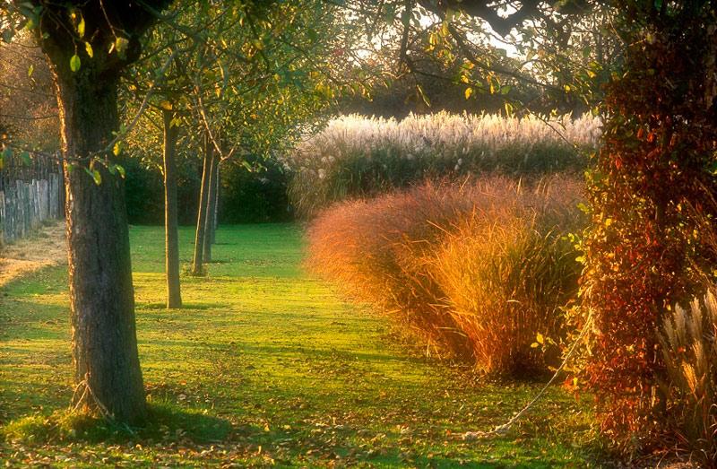 Le jardin plume - Les jardins de la lagune oualidia sylvie ...