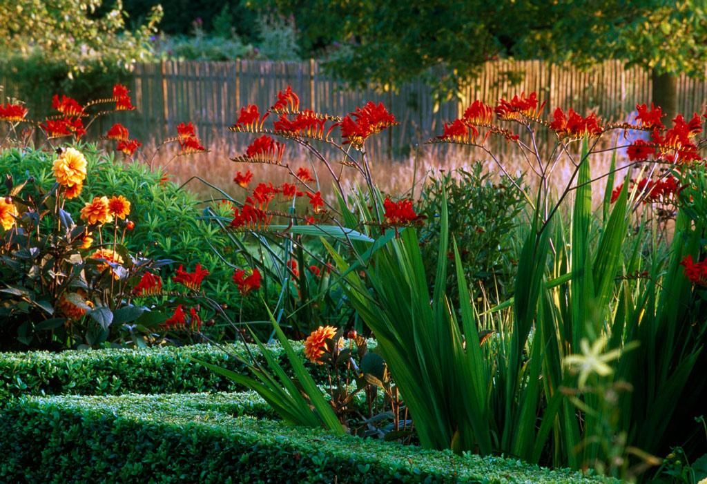 Le jardin plume for Les jardins