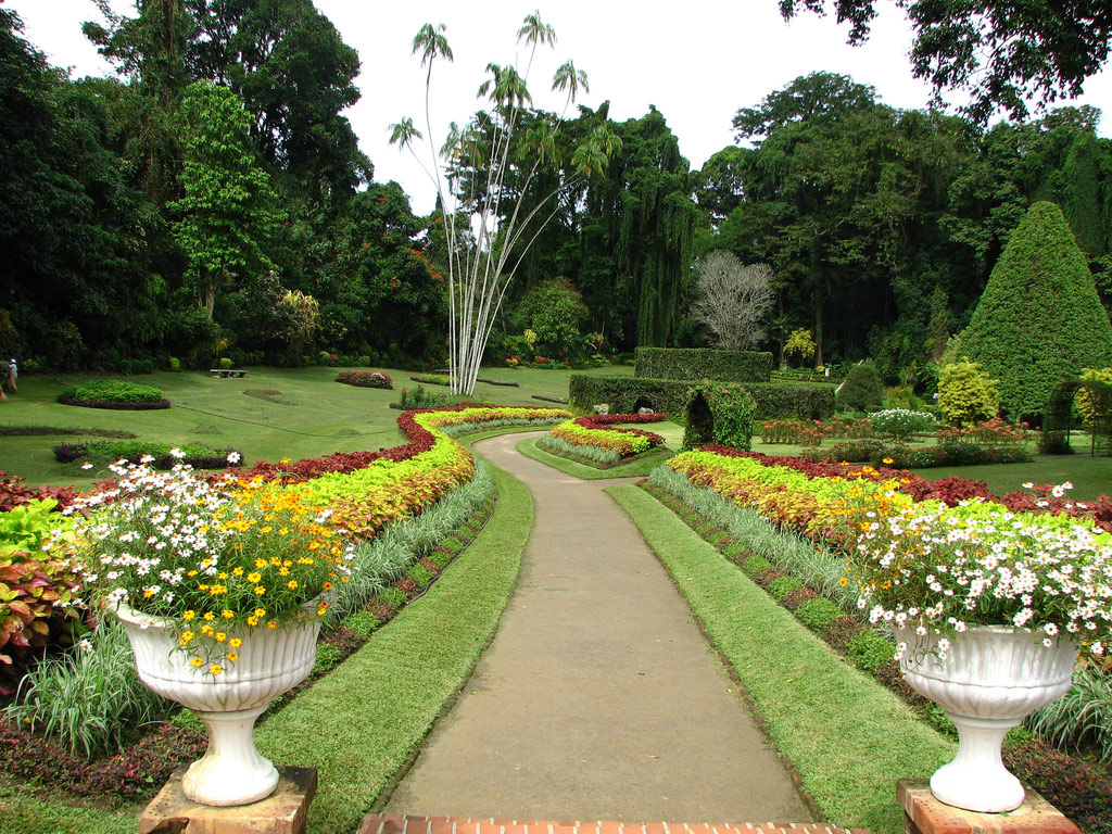Peradeniya botanic gardens for Landscape gardeners