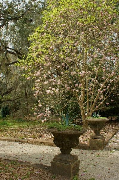 Goodwood House Gardens