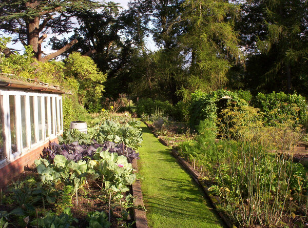 Kitchen Garden, Part-Y-Seal Gardens