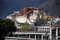 Medium potala jokhang original