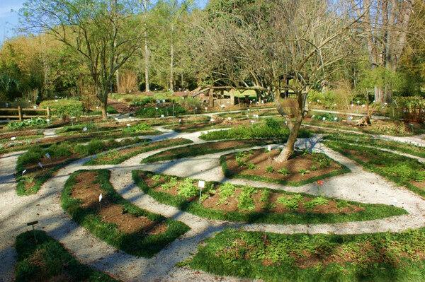 Herb Garden, Kanapaha Botanical Gardens
