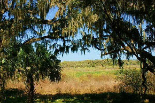 Kanapaha Botanical Gardens, Florida