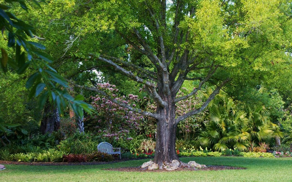 Heathcote Botanical Gardens, Fort Pierce