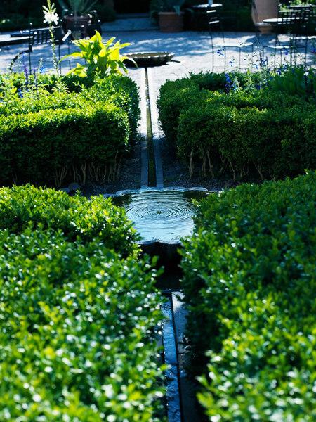 Apotekarns Trädgård Garden
