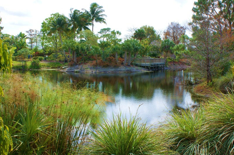 Mounts Botanical Garden, Florida
