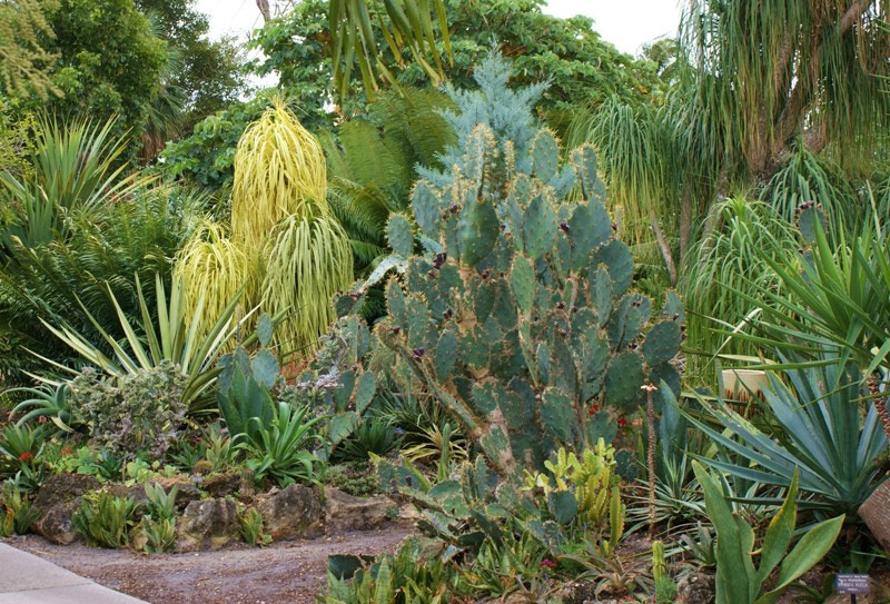 Mounts Botanical Garden, Palm Beach