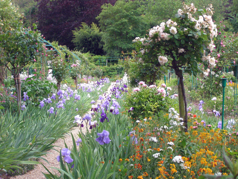 Irises And Roses