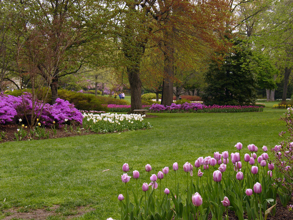 Sherwood Gardens, Maryland