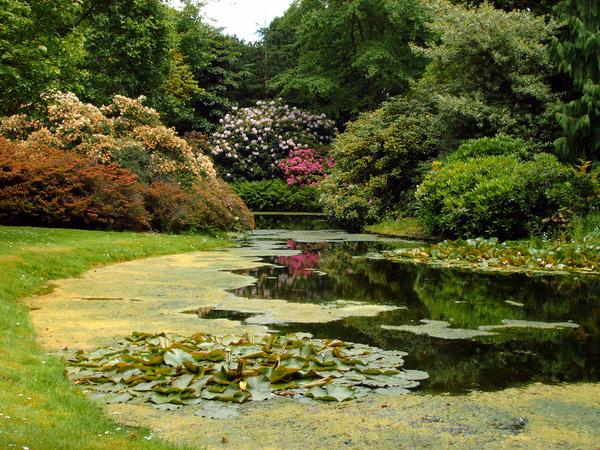 Arboretum Trompenburg, Holland