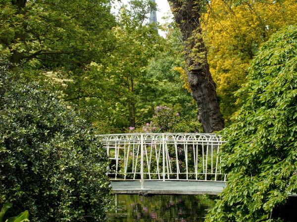 Bridge, Arboretum Trompenburg
