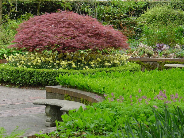 Park Amp Tilford Gardens